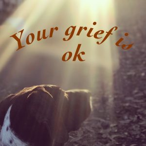 Your Grief is OK
